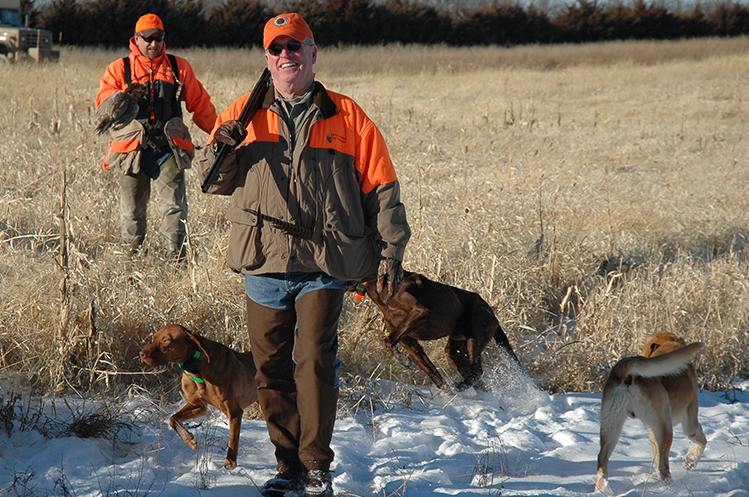 Pheasant hunting at Circle H Ranch