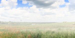 Circle H Ranch - South Dakota pheasant hunting